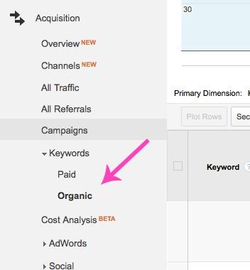 Google Analytics Keywords 3