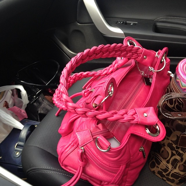 Could I have any more bags? Purse, Camera Bag (pink Epiphanie Bag), Beauty Bags, Makeup Bags