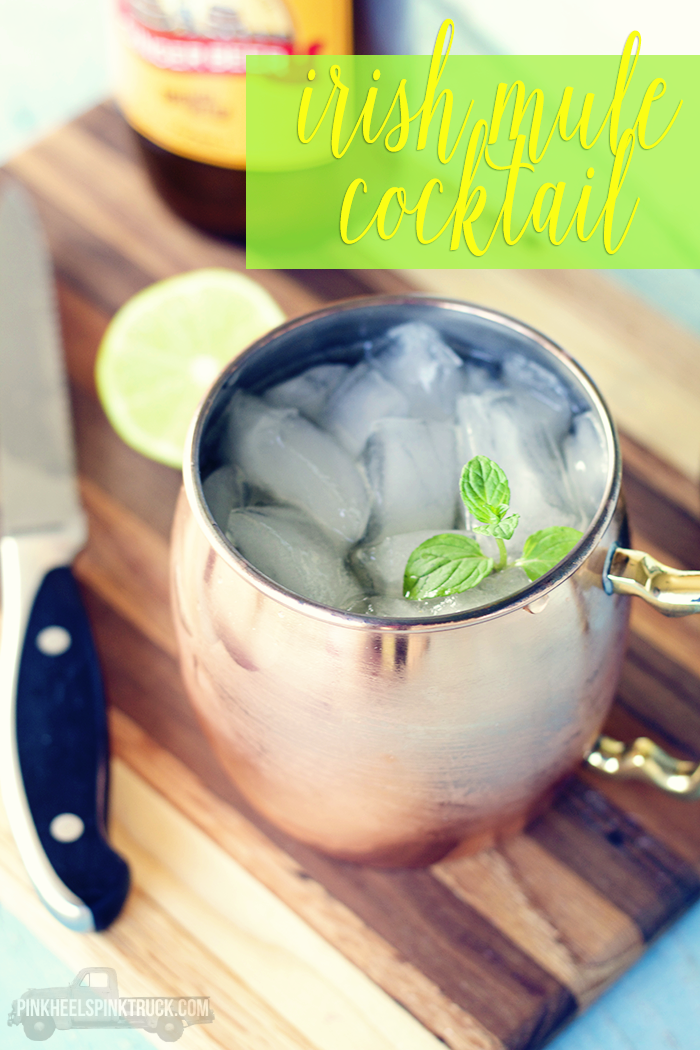 Love a good Moscow Mule? Swap out the Vodka for Irish Whiskey and you've got an Irish Mule! Come check out the recipe!