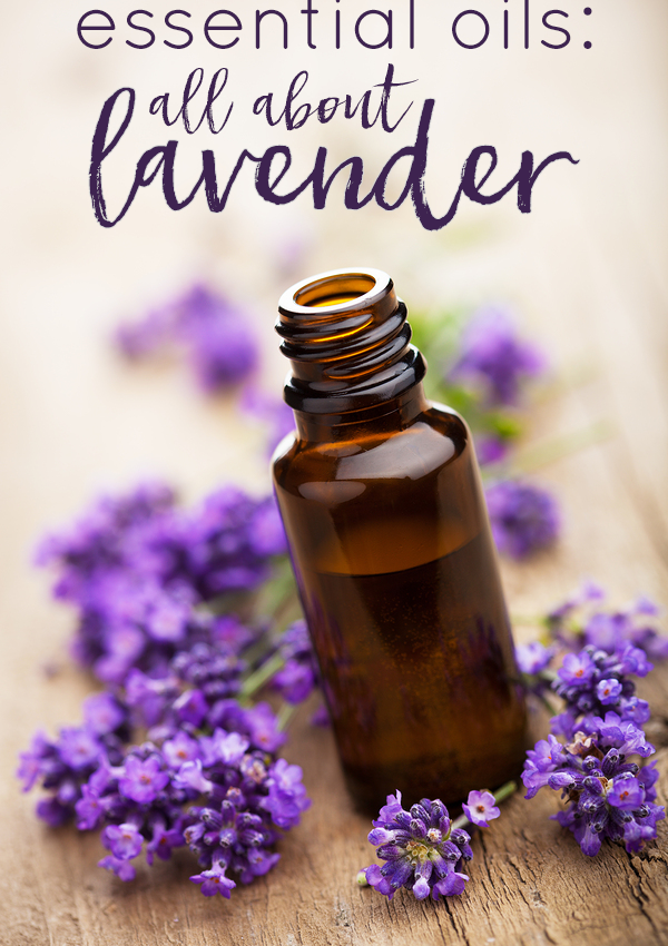 Essential Oils: All About Lavender