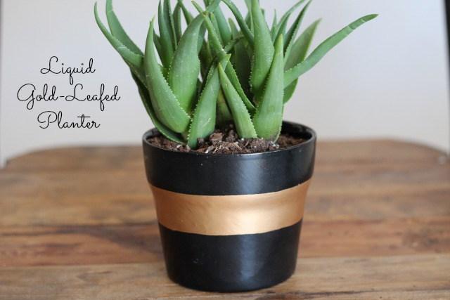 Liquidgoldplanter