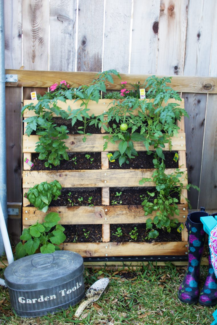 Have a small space but love to garden? Try a vertical pallet garden? Click to see the tutorial and my tips on how to make this work for you!